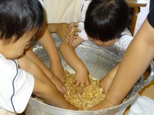幼稚園での味噌作り